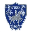 Dixie Hollins High School